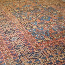 Image of Pretty Caucasian Rug