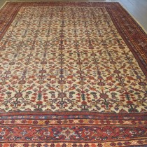 Image of Ziegler Mahal Carpet